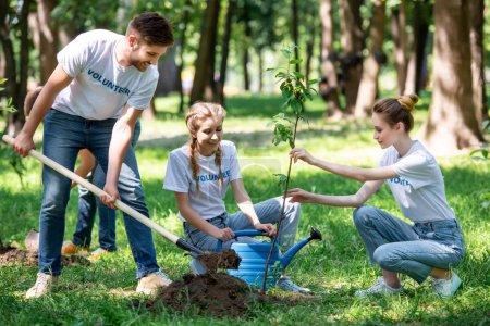 Photo pour Amis avec pelle et arrosage peuvent la plantation de nouveaux arbres dans le parc - image libre de droit