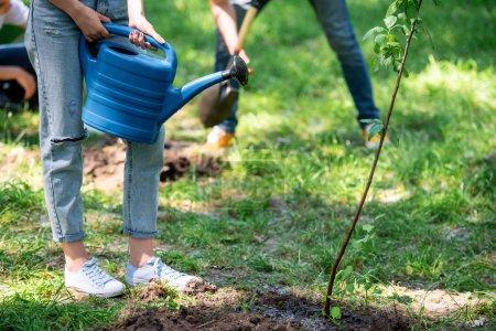 Photo pour Vue recadrée de femmes bénévoles d'arrosage nouvelle arborescence - image libre de droit