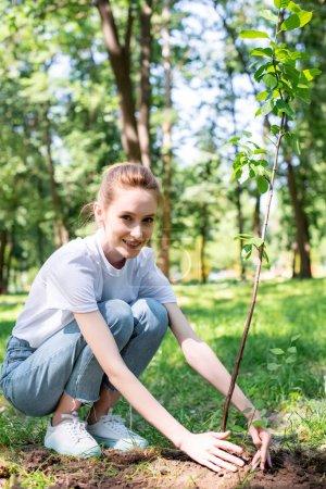 beautiful smiling volunteer planting new tree in park