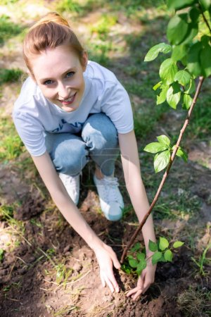 Photo pour Vue aérienne des jeunes souriants bénévoles plantation nouvelle arborescence - image libre de droit