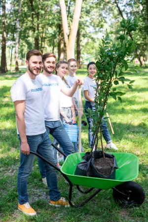 young volunteers with new trees in wheelbarrow