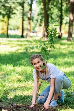 smiling beautiful volunteer planting new tree in park