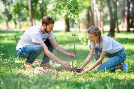 Photo pour Jeune couple de bénévoles plantation nouvelle arborescence dans le parc - image libre de droit