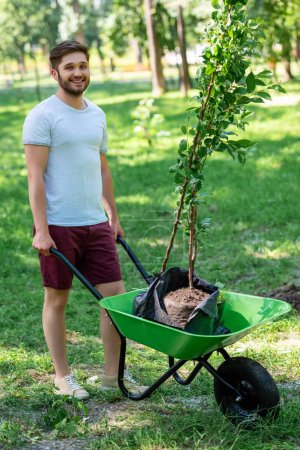 young smiling man with new trees in wheelbarrow