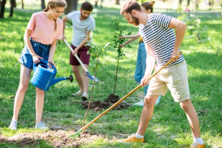 caucasian friends planting and watering new trees in park