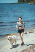 attractive asian sportswoman running with golden retriever on beach