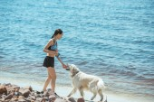 distant view of asian woman playing with labrador by sea