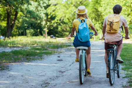 Photo for Back view of couple riding retro bicycles in park on summer day - Royalty Free Image
