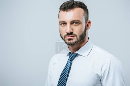 portrait of businessman looking at camera isolated on grey