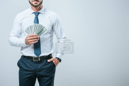 cropped image of accountant holding money isolated on grey