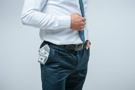 cropped image of financier standing with money in pocket isolated on grey