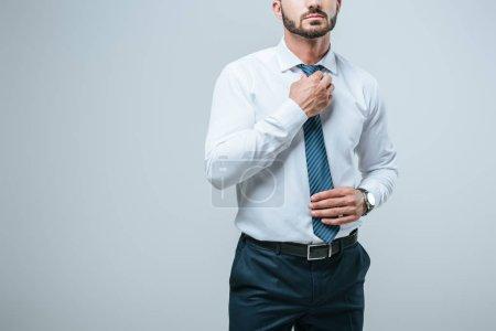 Foto de Imagen recortada del empresario tie aislado en gris de fijación - Imagen libre de derechos