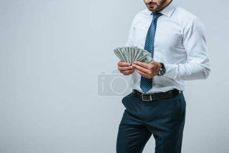 cropped image of financier counting dollars isolated on grey
