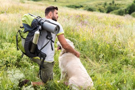 male tourist with backpack and dog sitting on summer meadow