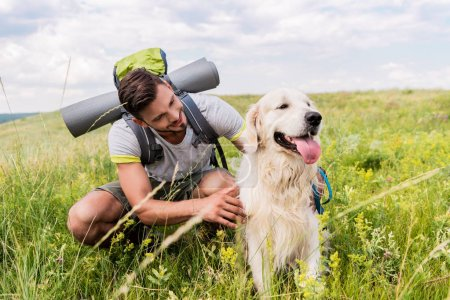 traveler with backpack and dog sitting on green meadow