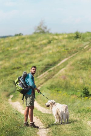 traveler walking with golden retriever dog on path on summer field