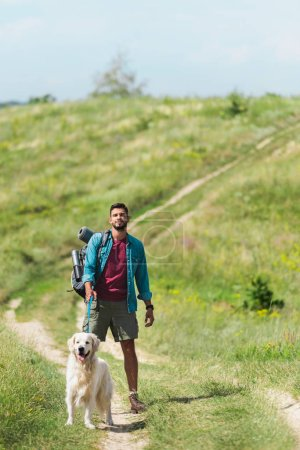 male traveler walking with dog on path on summer meadow