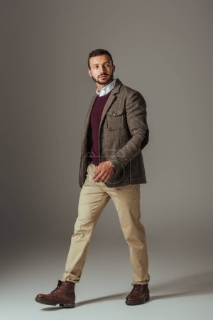 Photo for Stylish man posing in beige pants and autumn tweed jacket, on grey - Royalty Free Image