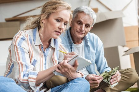 focused senior couple taking notes and counting money while moving home