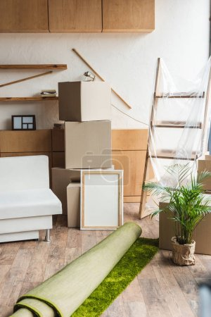 Photo pour Boîtes en carton, roulé tapis, plante verte d'intérieur et mobilier dans nouvel appartement au cours de la réinstallation - image libre de droit