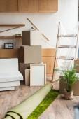 boîtes en carton, roulé tapis, plante verte d'intérieur et mobilier dans nouvel appartement au cours de la réinstallation