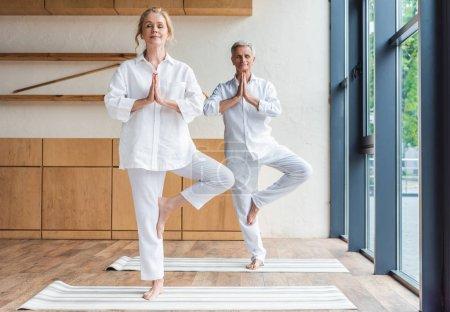 senior couple performing tree pose on yoga mats