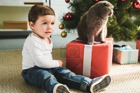 adorable child with scottish fold cat on present near christmas tree