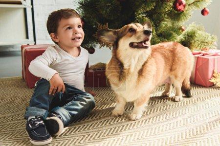 Photo pour Garçon adorable et chien assis sous l'arbre de Noël avec présente - image libre de droit