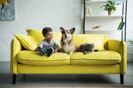 Photo for Adorable boy with welsh corgi dog and scottish fold cat sitting on yellow sofa at home - Royalty Free Image
