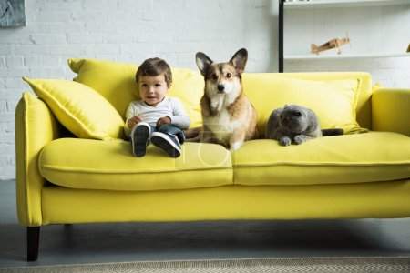 Photo for Adorable kid with dog and cat sitting on yellow sofa at home - Royalty Free Image