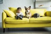 """Постер, картина, фотообои """"очаровательны малыш с собаки и кошки, сидя на желтый диване у себя дома"""""""