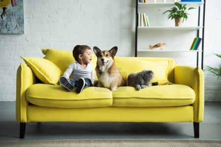 heureux enfant assis sur un canapé jaune avec des animaux domestiques