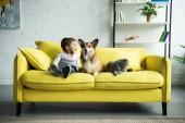 """Постер, картина, фотообои """"Счастливый ребенок сидит на желтый диван с домашними животными"""""""