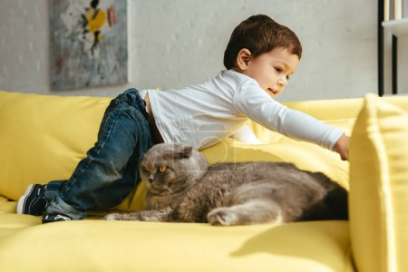 toddler playing on yellow sofa with scottish fold cat