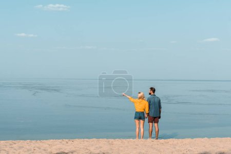 back view of couple holding hands on beach, girlfriend pointing on something