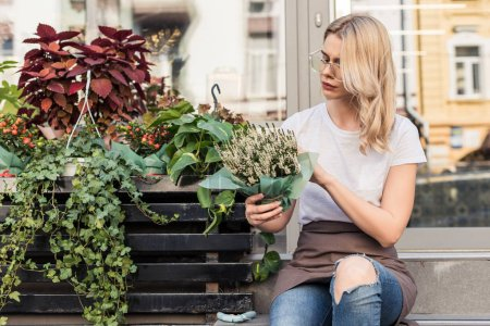 attractive florist sitting on stairs of flower shop and looking at potted plant