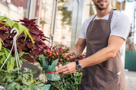 image recadrée de fleuriste prenant une plante en pot avec fruits rouges près de fleuriste