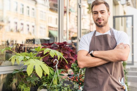 handsome florist in apron standing with crossed arms near flower shop and looking at camera