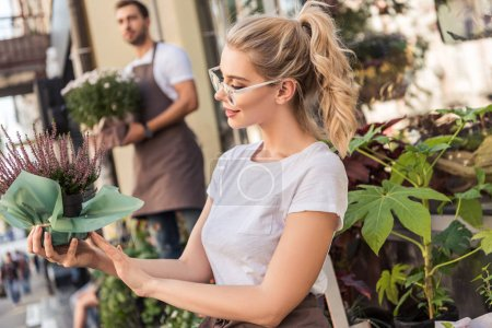 attractive florist checking potted salvia flowers near flower shop