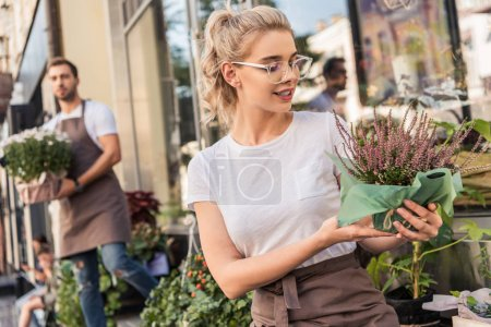 attractive florist looking at potted salvia flowers near flower shop