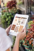 cropped image of florist using tablet with loaded pinterest page near flower shop