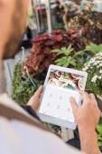 cropped image of florist using tablet with loaded foursquare page near flower shop