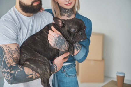 Photo for Cropped shot of young couple with tattoos holding cute french bulldog in new home - Royalty Free Image