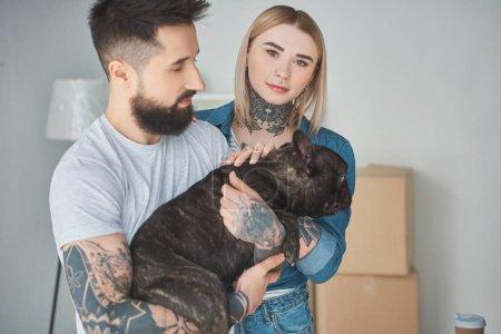 Photo pour Homme barbu tenant bouledogue français et belle fille regardant la caméra dans Maison Neuve - image libre de droit