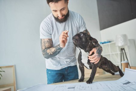 tattooed repairman with pencil and french bulldog looking at blueprint of new apartment on wooden tabletop