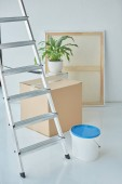 close up view of ladder, plastic bucket on paint, houseplant and cardboard box in new home