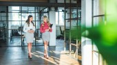 young businesswomen having conversation while walking in hall