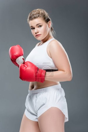 young size plus woman in sportswear and boxing gloves looking at camera isolated on grey