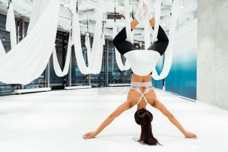 Photo for Back view of sportive girl practicing antigravity yoga in inversion position in light studio - Royalty Free Image