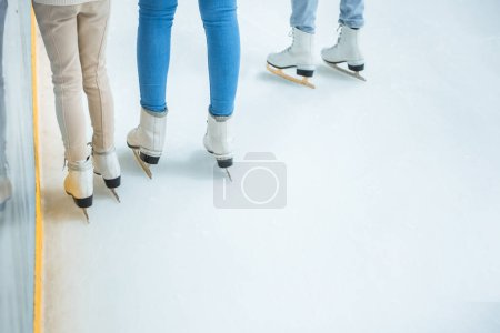 partial view of family in skates standing on ice rink